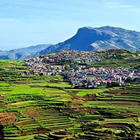 Mysore - Ooty - Kodaikanal 4 Nights/5 Days Tour