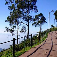 Ooty - Kodaikanal Package