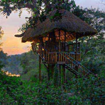 South Coorg & North Coorg Tour