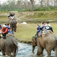 Short Escape of Bandipur Tour