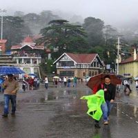Best Tour Shimla Manali Dharamshala