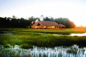 Moremi Crossing Camp 2 Nights Special (Locals)