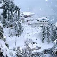 Summer Special Himachal Honeymoon Package From Delhi