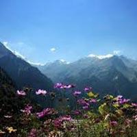 Heavenly Himachal Honeymoon Tour Package From Delhi