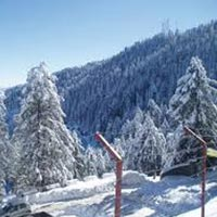 Shimla Kufri Chail Honeymoon Tour Package