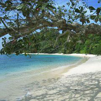 Andaman Honeymoon Package