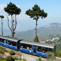 Darjeeling With Pelling Tour