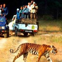Delhi - Nainital - Corbett - Delhi Tour