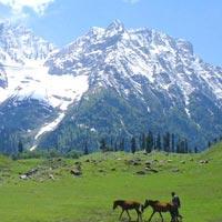 The Best Of Kashmir (Heaven On Earth)-Summer 2017 Tour