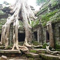 Siem Reap-Beng Mealea Tour
