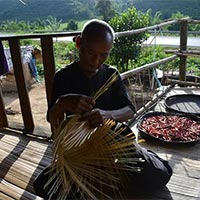 Luangnamtha trekking tour