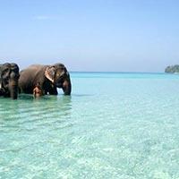 Wandoor Beach in Andaman Tour Package
