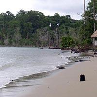 Port Blair Sea Beach Tour Package