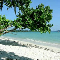 Havelock Tour Package