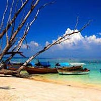 Havelock Island Tour