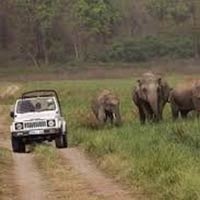 Amazing Corbett Tour