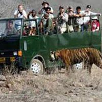 Ranthambore Delight Tour