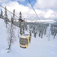 Amazing Kashmir Tour 5N/6D