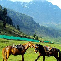 Explore Kashmir Tour