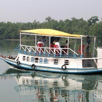 Sundervan The Royal Bengal Tour