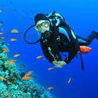 Experience Andaman Package