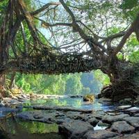 shillong bridge