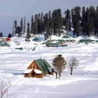 Kashmir Honeymoon Holiday Tour