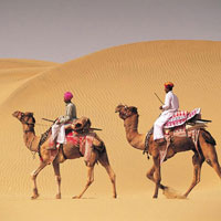 Desert Camel Safari Tour