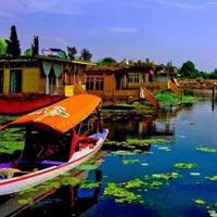 Kashmir Gloom Tour