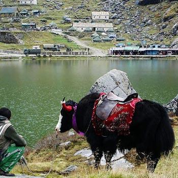 Gangtok - Sightseeing