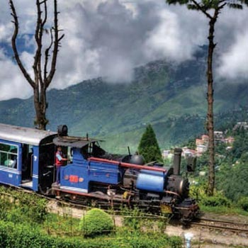 Darjeeling - Sightseeing