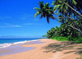 Package for Goa Tour