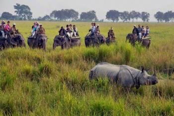 Seven Days Meghalaya & Assam Tour Package