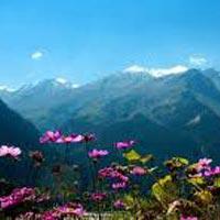 Manali Sarchu Leh Alchi Nubra Pangong Leh Tour