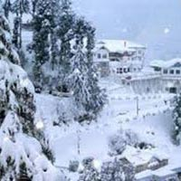 Honeymoon at Shimla - Manali Tour