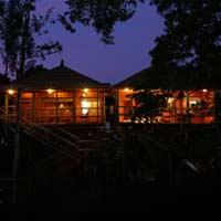 Kerala Backwater & Tree House Tour