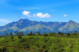 5 Nights and 6 Days Package – Mysore, Wayanad and Ooty Tour