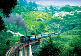 6 Nights and 7 Days Package – Bangalore, Mysore, Wayanad and Ooty