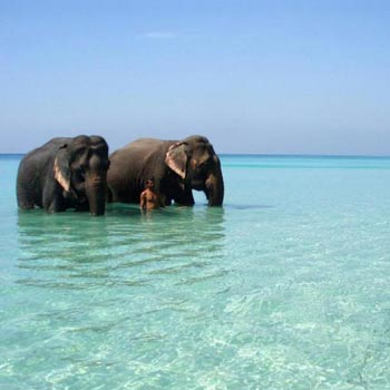 Dazzling Andamans Tour