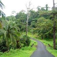 Magic of Andaman Tour