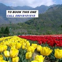 Kashmir Vaishno Devi Tour Package