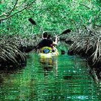 Enchanting Andaman Tour