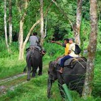 5 Night 6 Days Doars Leisure and Wildlife Tours