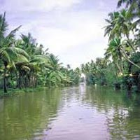 Kerala Hill Station & Backwater Tour Package