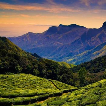 Short Escape to Kodaikanal Tour
