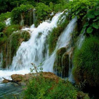 Best of Meghalaya - Walk in the Rain Tour
