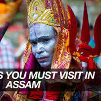 Wild Life Tour Package Assam