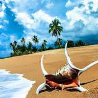 Blissful Andaman Package