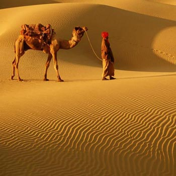 Desert Delight Rajasthan Tour Package