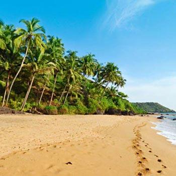 Romantic Goa  Tour 6 Day